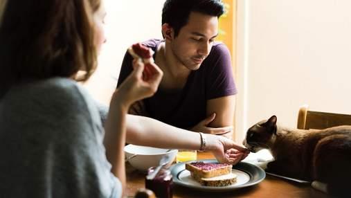 Чи варто змушувати себе снідати та ще 6 важливих питань про сніданок